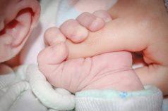 baby-428395_640